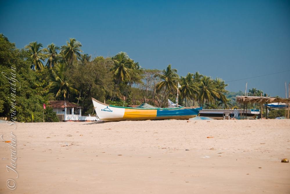Goa - a beach experience (5/6)